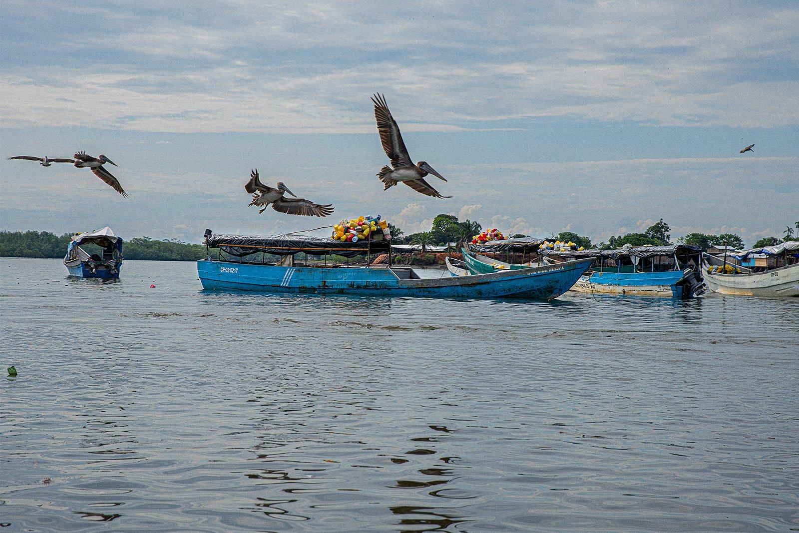 Bote de pesca de Altura